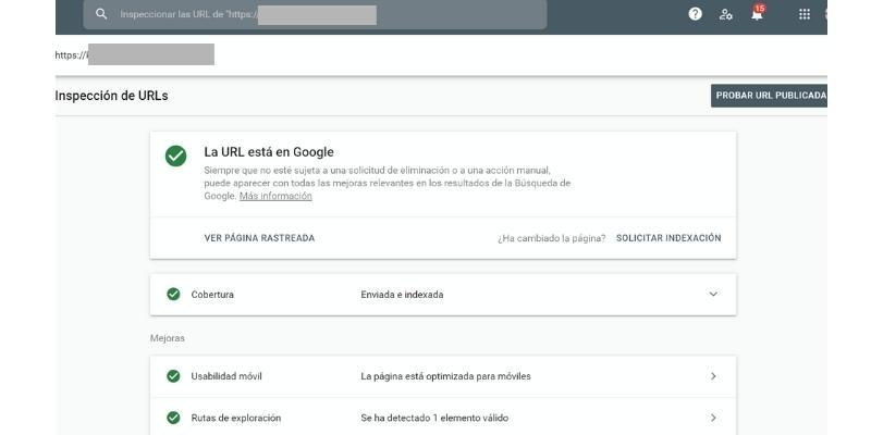Inspeccionar Urls com Google